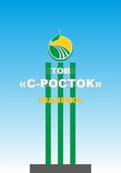 Продаем овощи ООО С-Росток