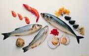 Продам рыбу и морепродукты оптом и в розницу по выгодным ценам