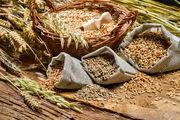 Куплю Пшеницу! Украина!