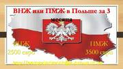 пмж и внж в Польше
